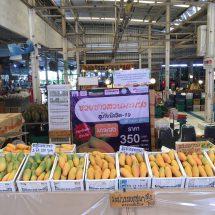 TradeWeThai ปรับโฉมใหม่ประเดิมช่วยเกษตรกรต้านภัยโควิท